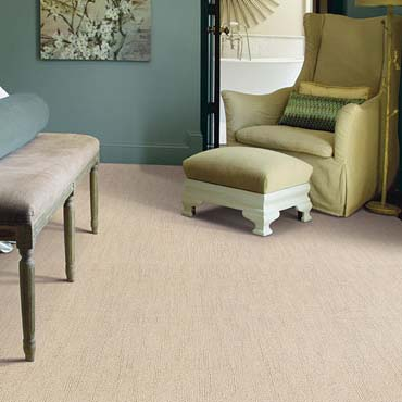Caress Carpet by Shaw | East Northport, NY